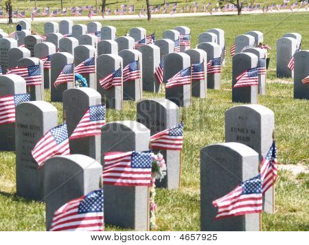 Graves And Flags