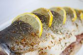 Fresh Pink Salmon prepared for cooking with Lemon and spice poster