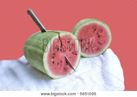Last Melon of the Season