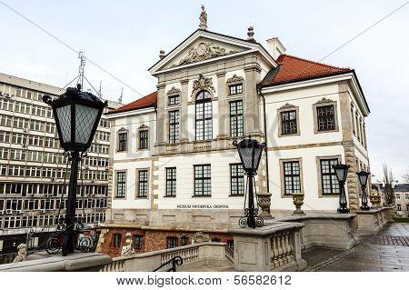 Ostrogski Palace, Fryderyk Chopin Museum