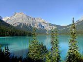 Emerald Lake Yoho National Park British Columbia Canada poster