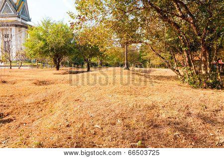 Killing Fields Memorial Site
