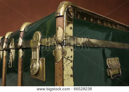 Green Trunk Perspective