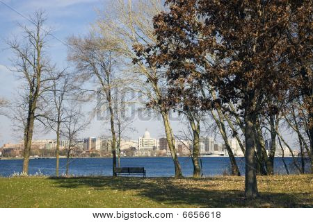 Downtown Madison Seen From The Park