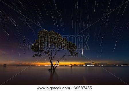 stars drop