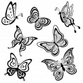 Vector, set symbolical butterflies, hand-draw monochrome contours on a white background poster