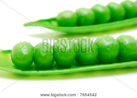 Rows Of Peas In Pod