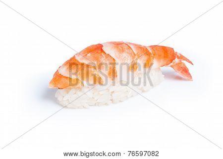 Shrimp sushi nigiri