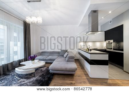 Kitchen And Living Area In Luxury Home