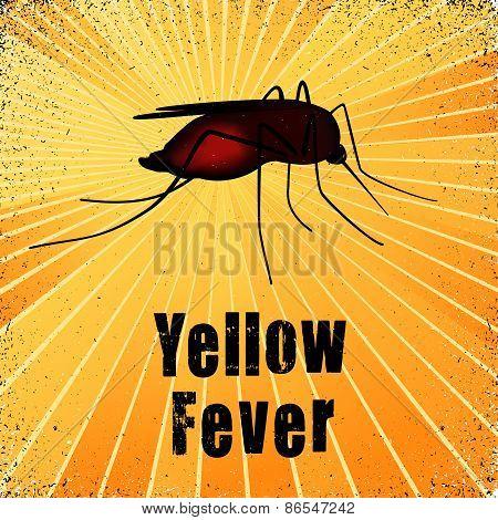 Yellow Fever, Mosquito