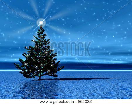 Christmas Tree . Night Star