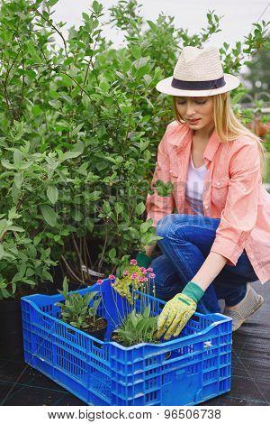 Modern farmer in hat replanting flowers