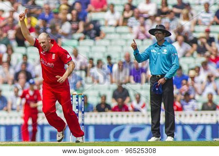 LONDON, ENGLAND - June 19 2013: England's James Tredwell celebrates taking the wicket of Faf du Plessis (not pictured) during the ICC Champions Trophy semi final match between England and South Africa