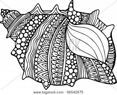 Vector hand drawn abstract doodle ornamental artistic seashell illustration