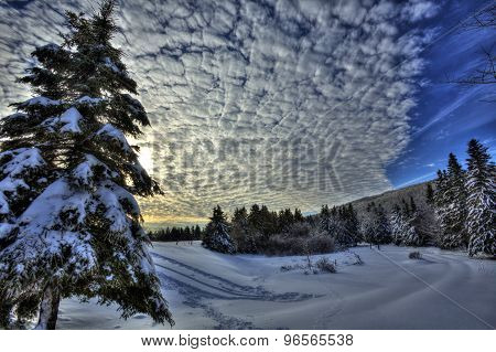 Hdr Canada Snow Sky Trees