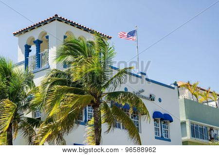 Coconut trees and buildings along the ocean coast at south Miami beach