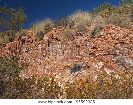 Flecked Dolomite rock and spinifex grass