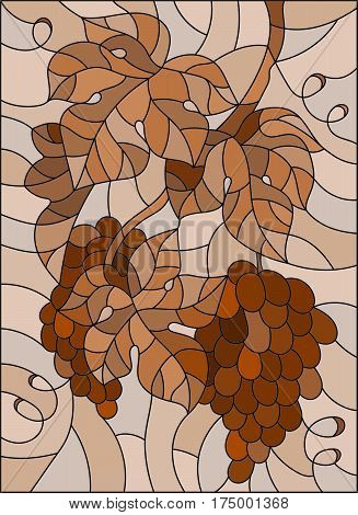The illustration in stained glass style painting with a bunch of grapes and leaves brown tone Sepia