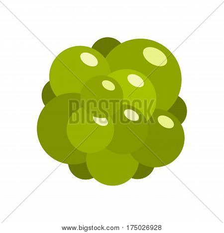 Ovary icon in flat style isolated on white background vector illustration