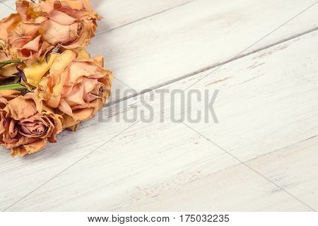 Bunch of dried yellow roses on old white wooden backgroud