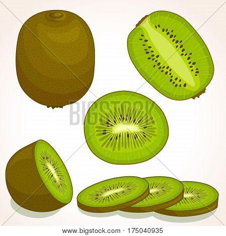 Vector kiwi. Set of whole sliced half of a kiwifruit isolated on white background. Vector illustration.