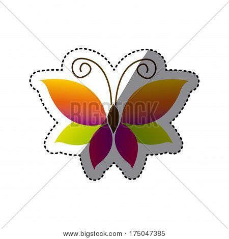 butterfly with tricolor wings icon, vector illustraction design