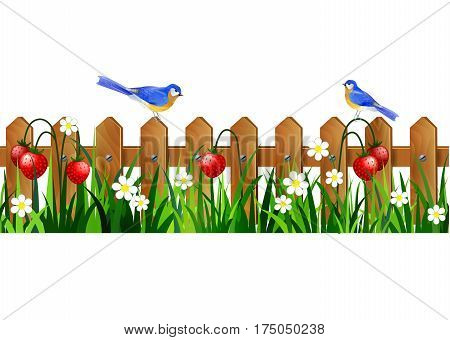 Green Grass with strawberries on wooden rustic fence background seamless isolated clip art vector on white and bluebirds