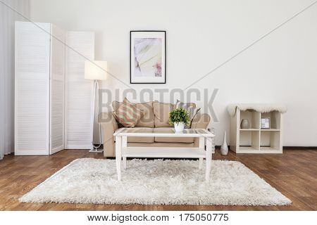 Interior of beautiful living room with folding screen and sofa