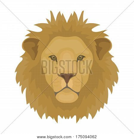 Lion icon in cartoon design isolated on white background. Realistic animals symbol stock vector illustration.