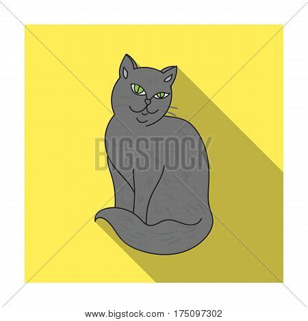 Nebelung icon in flat design isolated on white background. Cat breeds symbol stock vector illustration.