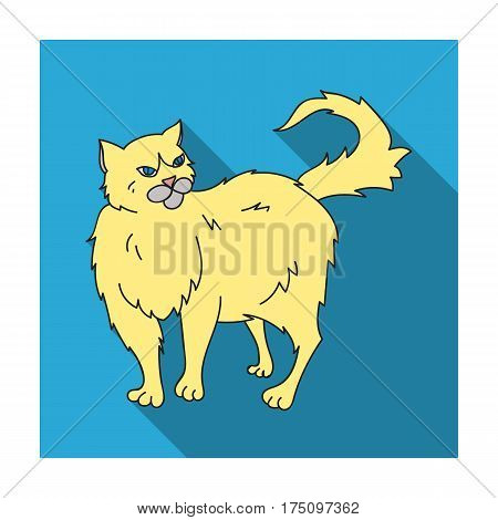 Persian icon in flat design isolated on white background. Cat breeds symbol stock vector illustration.