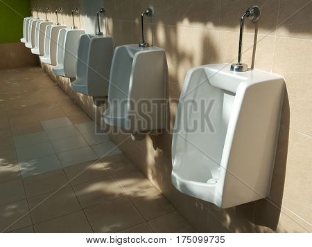 Male public toilets are shadows of the trees.
