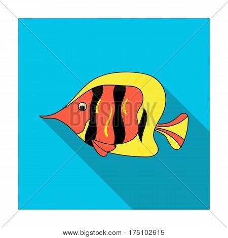 Angel fish icon in flat design isolated on white background. Sea animals symbol stock vector illustration.