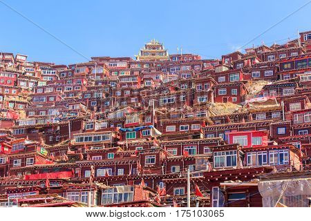 Red monastery and home at Larung gar (Buddhist Academy) in sunshine day and background is blue sky Sichuan China