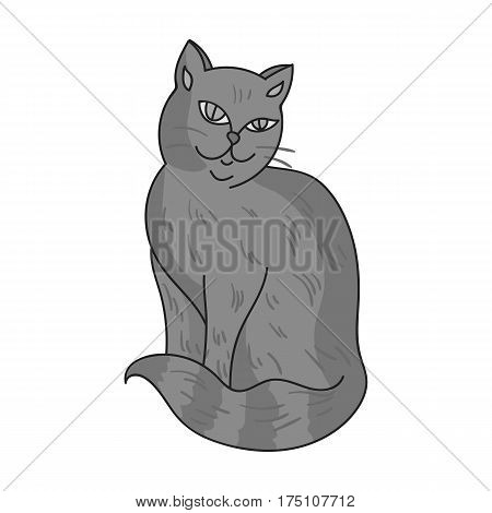 Nebelung icon in monochrome design isolated on white background. Cat breeds symbol stock vector illustration.