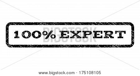 100 Percent Expert watermark stamp. Text tag inside rounded rectangle with grunge design style. Rubber seal stamp with scratched texture. Vector black ink imprint on a white background.