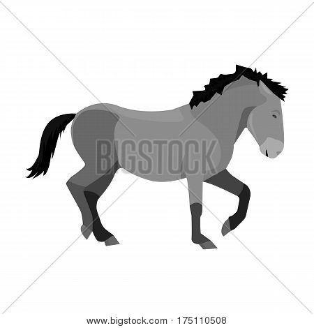 Mongolian horse. Vehicle ancient mongolov in the war.Mongolia single icon in monochrome style vector symbol stock web illustration.