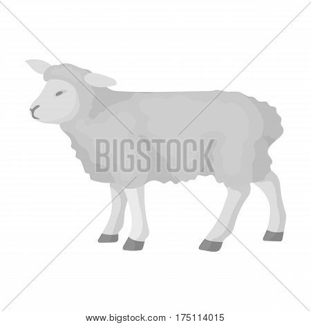 Sheep icon in monochrome design isolated on white background. Scotland country symbol stock vector illustration.