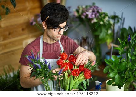 Vendor of flowers arranging bouquet of red tulips