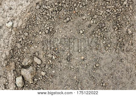 Close up wet stony soil in a spring abstract background