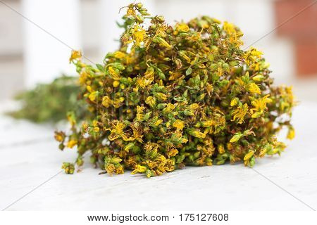 Big Bunch  Yellow Flowers Hypericum On White Background