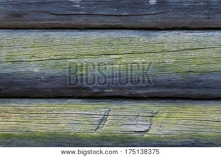 Part of the wall of old logs covered with moss. Wooden background.
