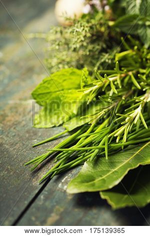 Thyme, Sage, Rosemary, ginger and Oregano on Wooden Board