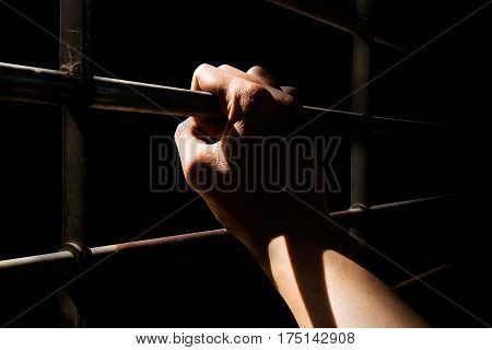 Close up Man hands are holding the cage door in dark room