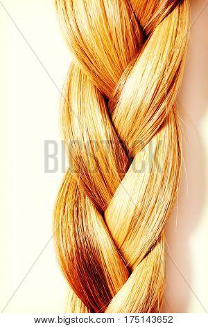 Braid Hairstyle. Blond Long Hair close up.