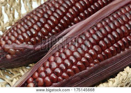 closeup boiled purple corn on white background