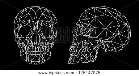 Human skull on black background, front and side view, geometric polygons and triangles cranium, line art, vector illustration