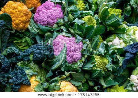 Purple Cauliflower, Orange Cauliflower And Roman Cauliflower On Display