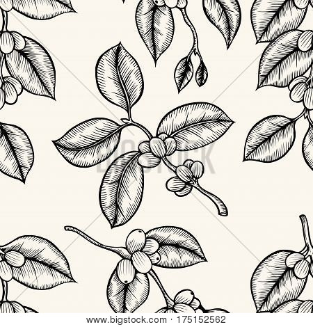Berries, leaves, shoots and grains of coffee - seamless pattern, line art.