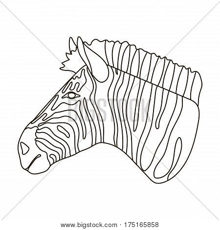 Zebra icon in outline design isolated on white background. Realistic animals symbol stock vector illustration.